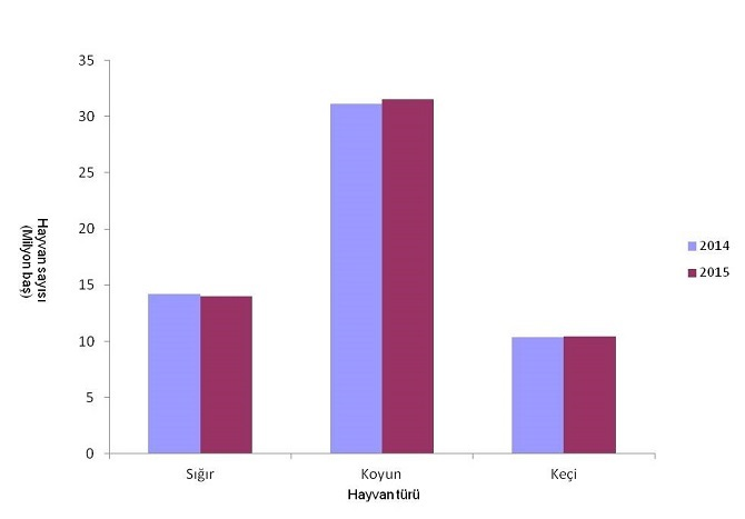 hayvansal-uretim-istatistikleri-aciklandi.jpg